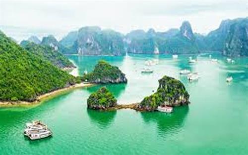 Vietnam Tourist