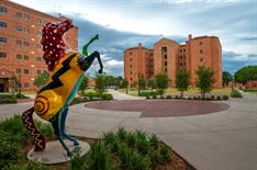 Thông tin trường Đại học Midwestern State